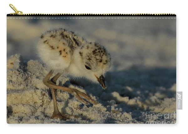 Snowy Plover On The Hunt Carry-all Pouch