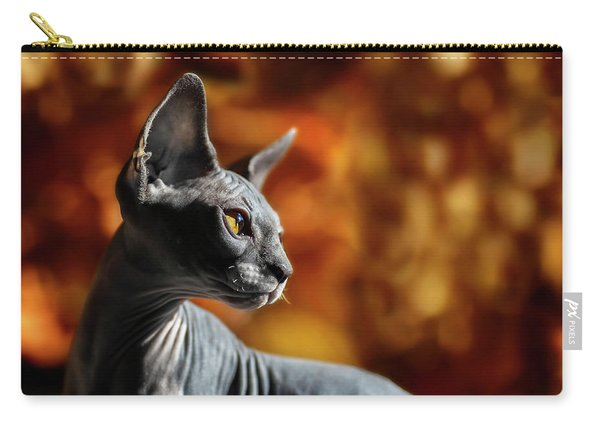 Sphynx In Fall Bokeh Carry-all Pouch