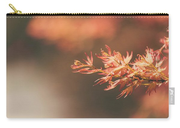Carry-all Pouch featuring the photograph Spring Or Fall by Dheeraj Mutha
