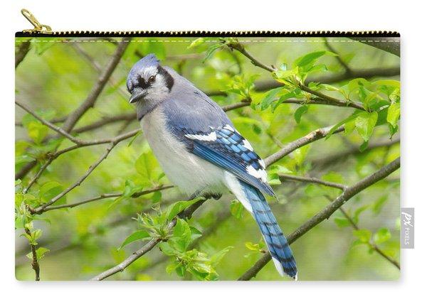 Springtime Bluejay Carry-all Pouch