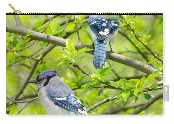 Springtime Pairs Carry-all Pouch