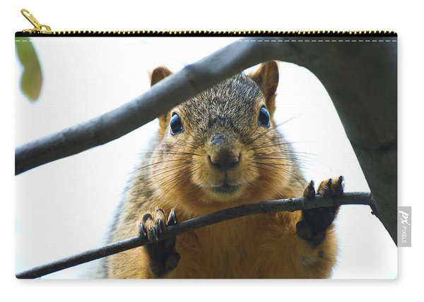 Spying Fox Squirrel Carry-all Pouch