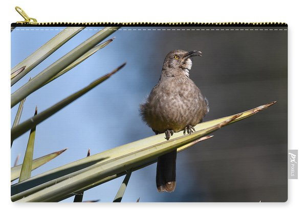 Squawker Carry-all Pouch