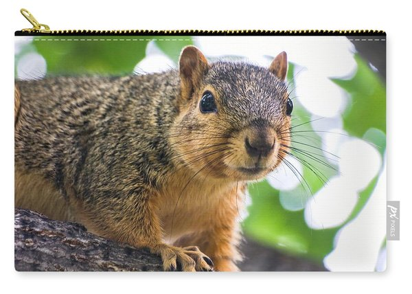Squirrel Close Up Carry-all Pouch