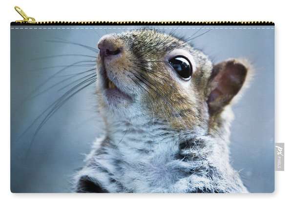 Carry-all Pouch featuring the photograph Squirrel With Nose In The Air by Scott Lyons