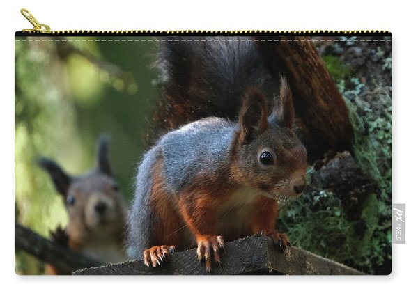 Squirrels Carry-all Pouch