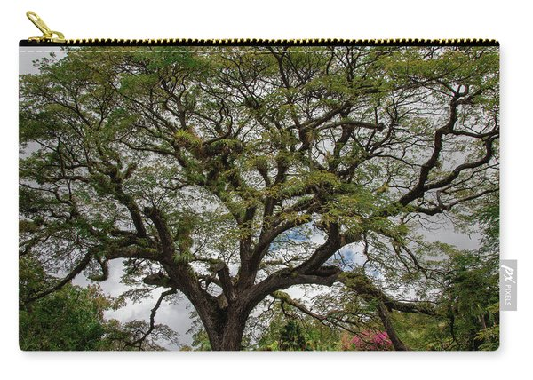 St. Kitts Saman Tree Carry-all Pouch