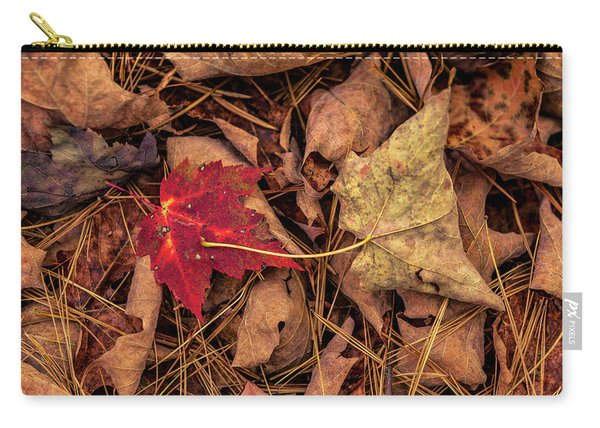 Stand-out Carry-all Pouch