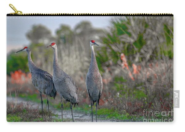 Carry-all Pouch featuring the photograph Standing Sandhills by Tom Claud