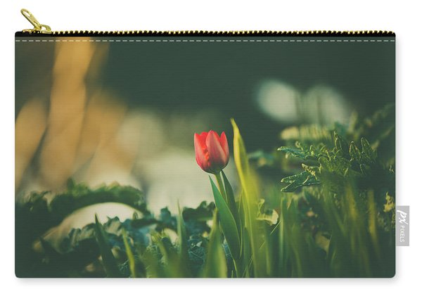 Carry-all Pouch featuring the photograph Start Of Spring by Dheeraj Mutha
