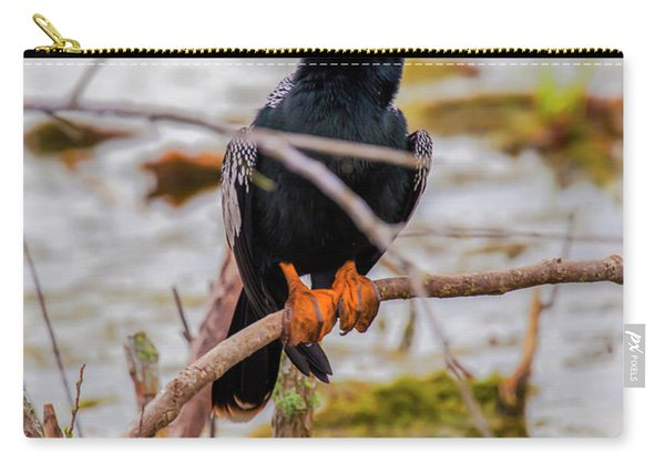 Stunning Anhinga Carry-all Pouch