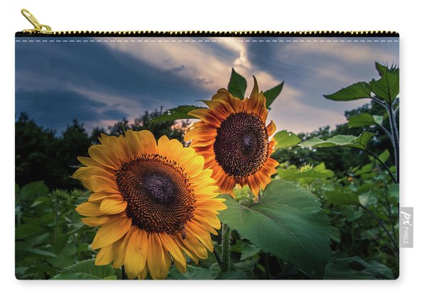 Sunflowers In Evening Carry-all Pouch