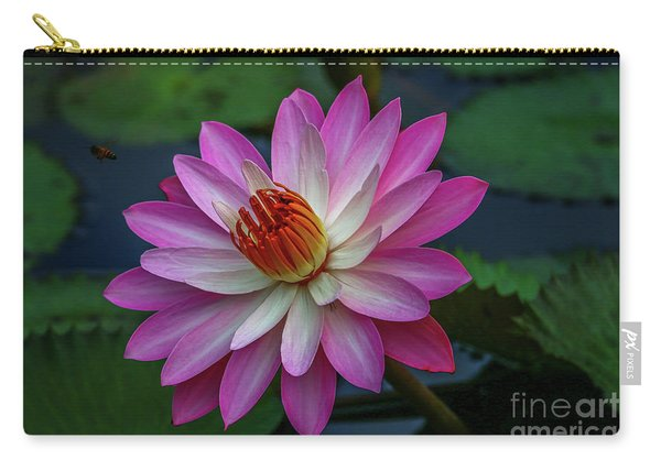 Carry-all Pouch featuring the photograph Sunlit Lily by Tom Claud