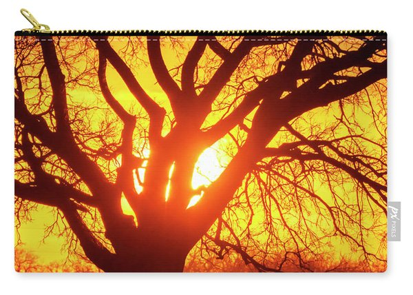 Carry-all Pouch featuring the photograph Sunset And Tree Silhouette 03 by Rob Graham