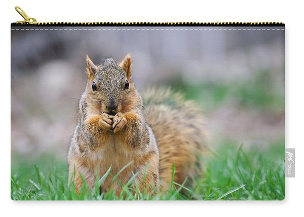 Super Cute Fox Squirrel Carry-all Pouch