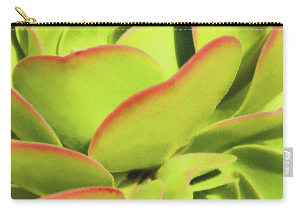 Sweet Succulents I Carry-all Pouch