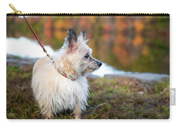Carry-all Pouch featuring the photograph Tasha 5 by Brian Hale