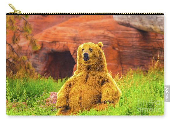 Carry-all Pouch featuring the photograph Teddy Bear by Dheeraj Mutha