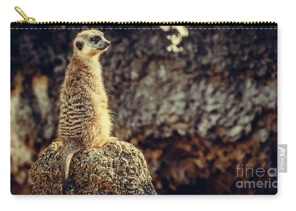 Carry-all Pouch featuring the photograph The Cat Who Does Not Meow... by Dheeraj Mutha
