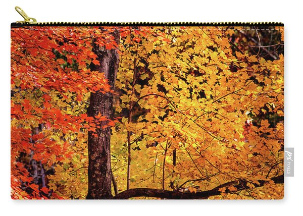 The Colors Of Fall Carry-all Pouch