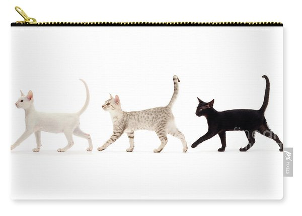The Kits Parade - Three Carry-all Pouch