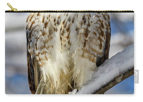 The Look, Red Tailed Hawk 1 Carry-all Pouch