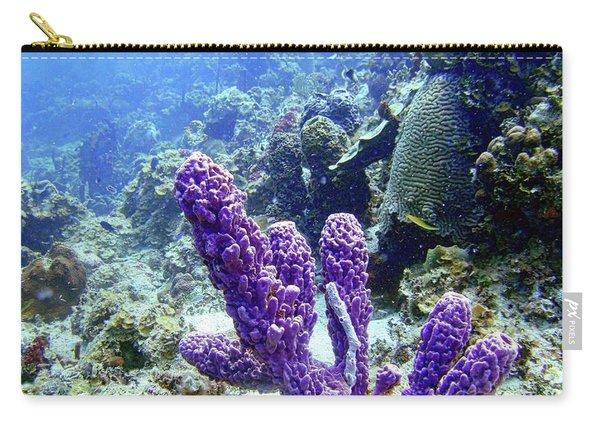 The Purple Sponge Carry-all Pouch