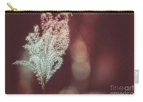 Carry-all Pouch featuring the photograph The Shine by Dheeraj Mutha
