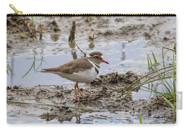 Three-banded Plover Carry-all Pouch