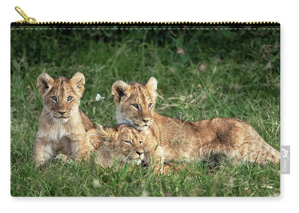 Three Cute Lion Cubs In Kenya Africa Grasslands Carry-all Pouch