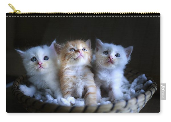 Three Little Kitties Carry-all Pouch