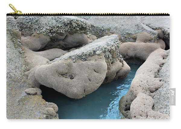 Carry-all Pouch featuring the photograph Tidal Pool 1 by Megan Dirsa-DuBois