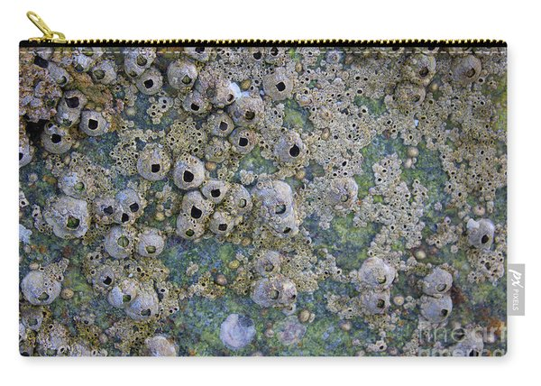 Carry-all Pouch featuring the photograph Tidal Pool 4 by Megan Dirsa-DuBois