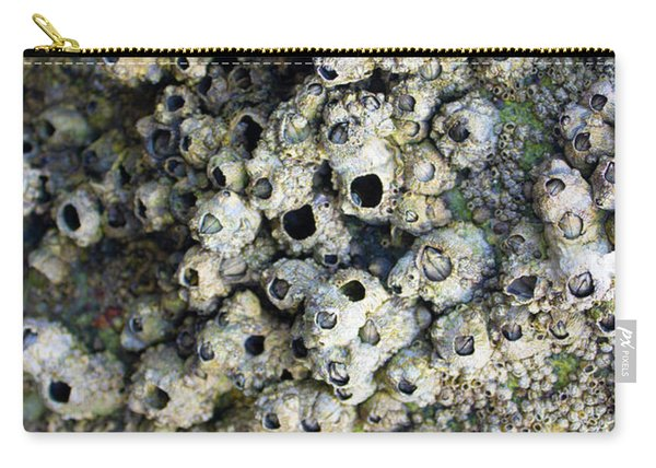 Carry-all Pouch featuring the photograph Tidal Pool 5 by Megan Dirsa-DuBois