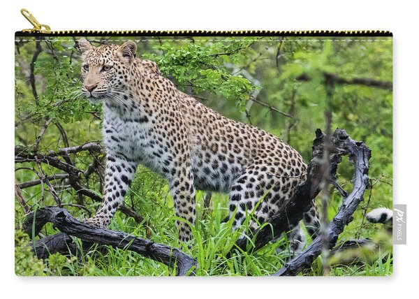 Tree Climbing Leopard Carry-all Pouch