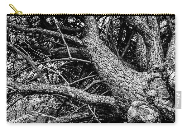 Carry-all Pouch featuring the photograph Trees, Leaning by Edward Lee