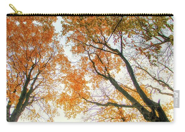 Trees Looking Up Carry-all Pouch