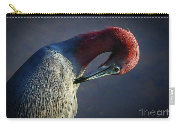 Carry-all Pouch featuring the photograph Tricolor Preening by Tom Claud