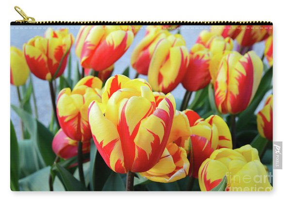 Tulips And Tiger Stripes Carry-all Pouch