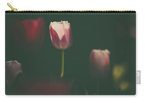 Carry-all Pouch featuring the photograph Under The Beam by Dheeraj Mutha