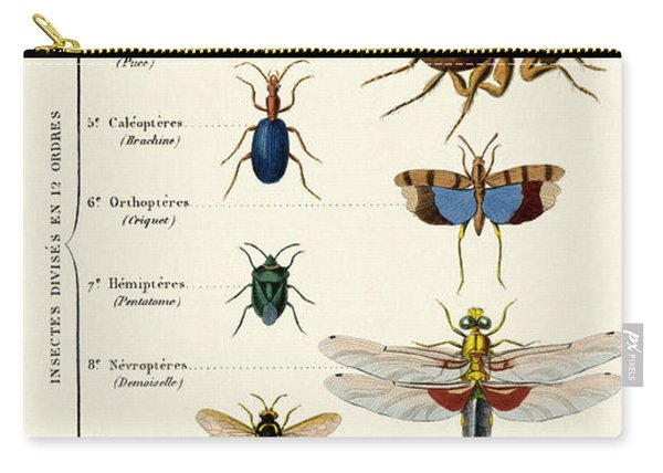 Vintage Insects Print Carry-all Pouch