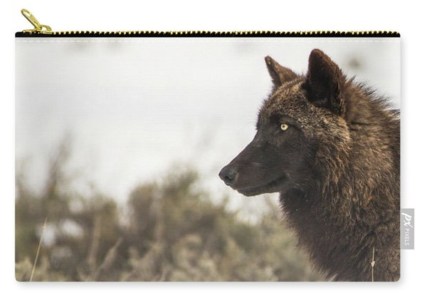 Carry-all Pouch featuring the photograph W11 by Joshua Able's Wildlife