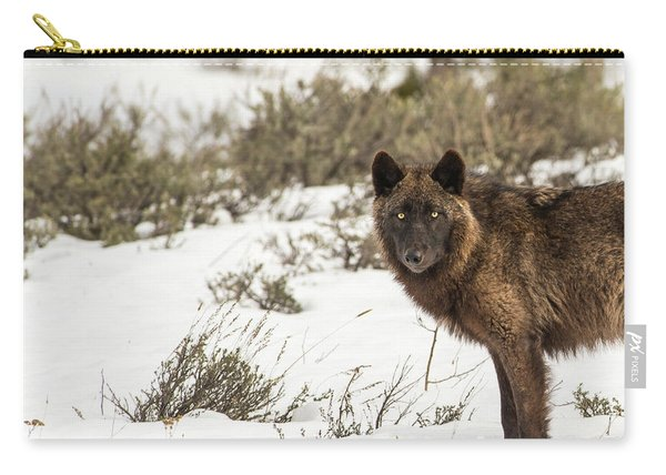 Carry-all Pouch featuring the photograph W12 by Joshua Able's Wildlife