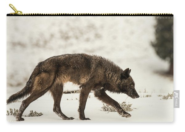 Carry-all Pouch featuring the photograph W13 by Joshua Able's Wildlife