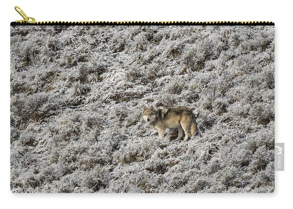 Carry-all Pouch featuring the photograph W17 by Joshua Able's Wildlife