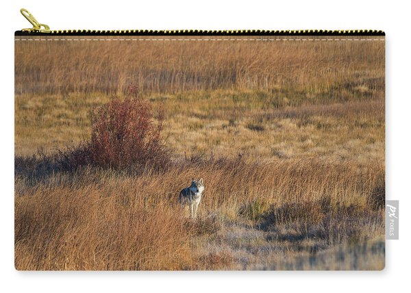 Carry-all Pouch featuring the photograph W2 by Joshua Able's Wildlife