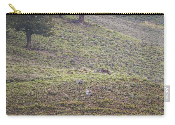Carry-all Pouch featuring the photograph W25 by Joshua Able's Wildlife