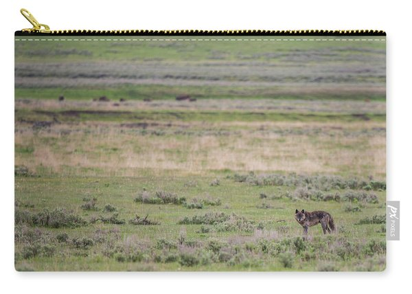 Carry-all Pouch featuring the photograph W26 by Joshua Able's Wildlife