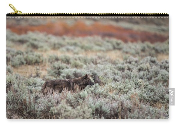 Carry-all Pouch featuring the photograph W30 by Joshua Able's Wildlife