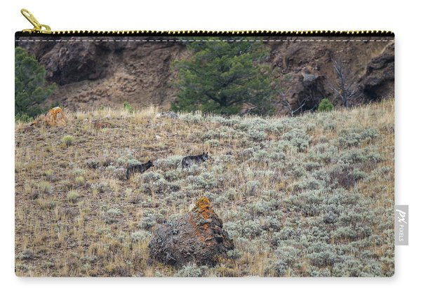 Carry-all Pouch featuring the photograph W32 by Joshua Able's Wildlife